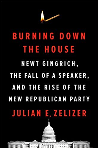 Burning down the house book cover
