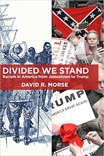 Divided we stand book cover