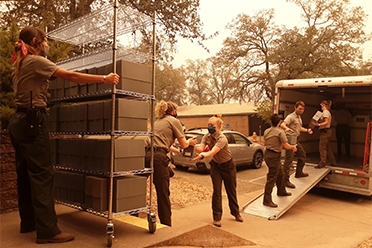 National Park Service employees loading archival records on Tuesday afternoon. (Photo courtesy of Paul Hardwick, NPS)
